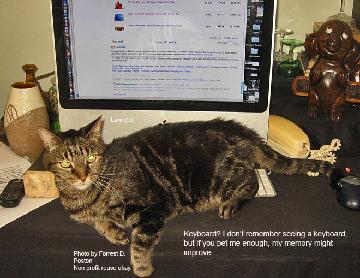 Lancelot on keyboard
